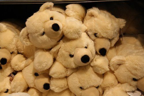 amo ursinhos :d