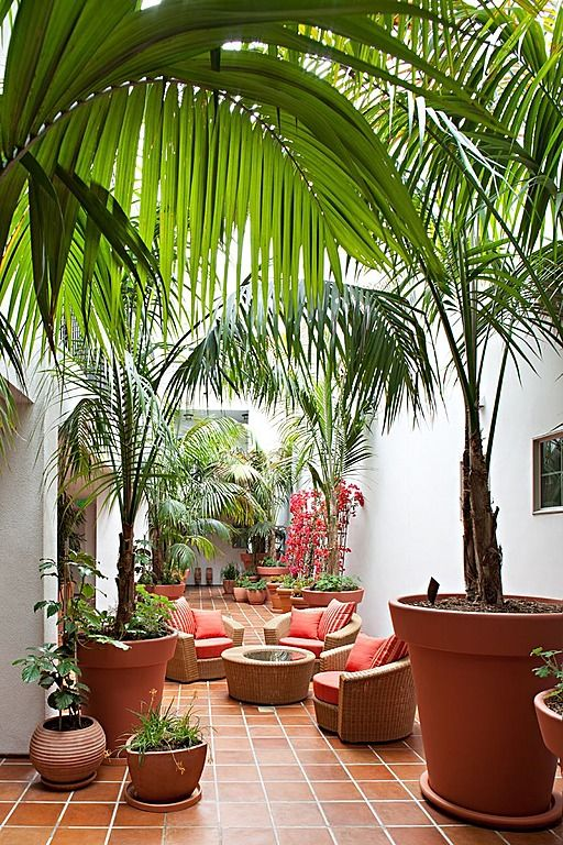 love this courtyard...especially the giant terra cotta pots!
