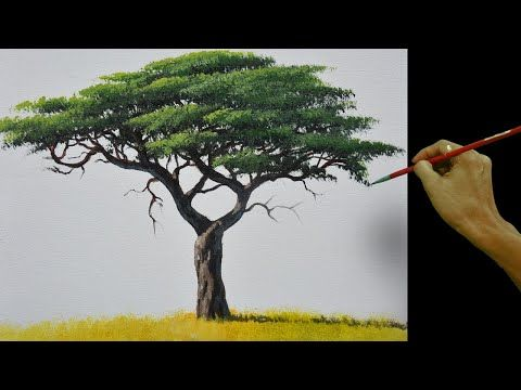 How To Paint Realistic Acacia Tree Acrylic Painting Tutorial