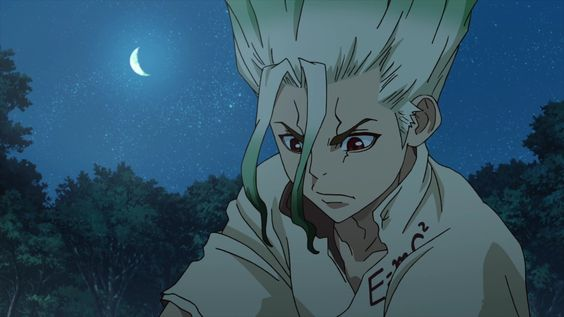 What Caused Petrification In Dr. Stone Anime? [SPOILERS]