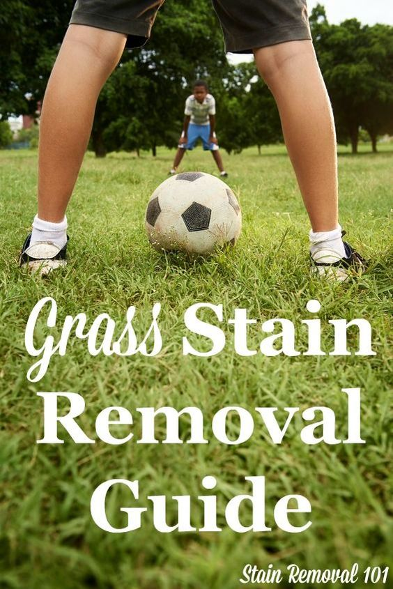 How To Remove Grass Stains Upholstery Grasses And