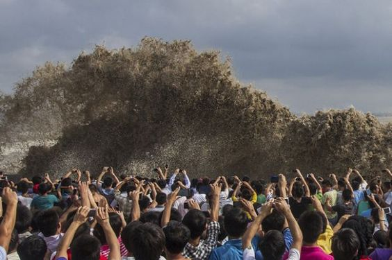 Shouldn't these people be moving out of the way of this tidal wave, not photographing it?!