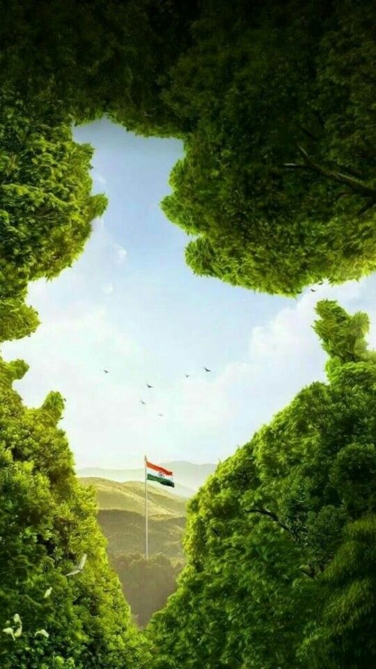 Happy Indipendence Day Indian Flag Wallpaper Republic Day India Indian Flag Images