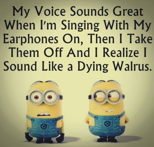 Despicable Me minions. Singing like a dying walrus. 。◕‿◕。 See my Despicable Me Minions pins https://www.pinterest.com/search/my_pins/?q=minions
