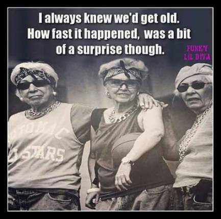 17 Ideas Birthday Wishes Funny Humor Getting Older For 2019 Birthday Quotes Funny Funny Birthday Meme Birthday Wishes Funny