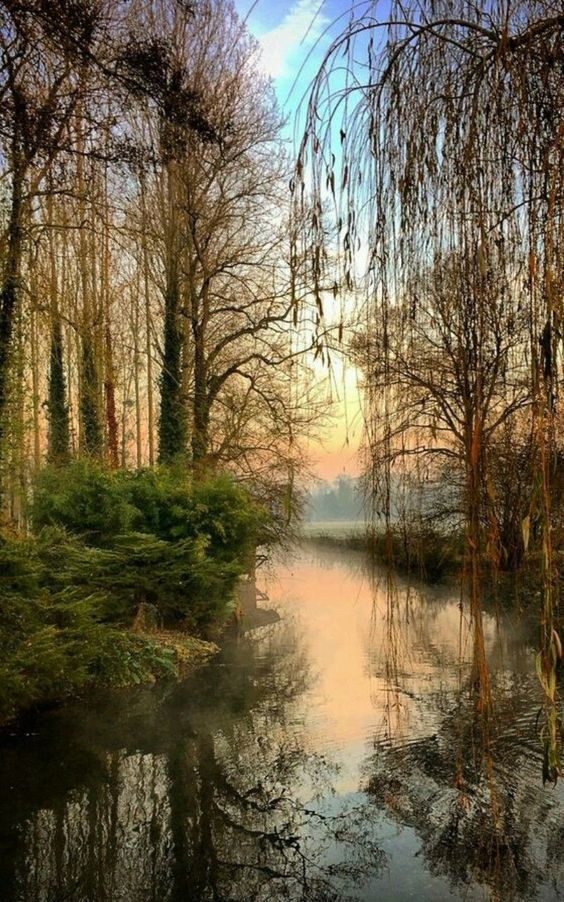 Au Fil De L Eau Soleil Couchant Landscape Photography Trees Landscape Photography Nature Nature Photography