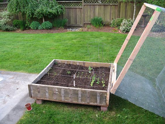 Pinterest the world s catalog of ideas - Garden ideas to keep animals out ...