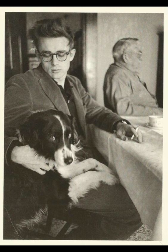 James Dean and his border collie while on his visit to his childhood home and family in 1955 http://www.thesterlingsilver.com/product/ray-ban-rb3025-aviator-large-metal-aviator-sunglasses-brown/