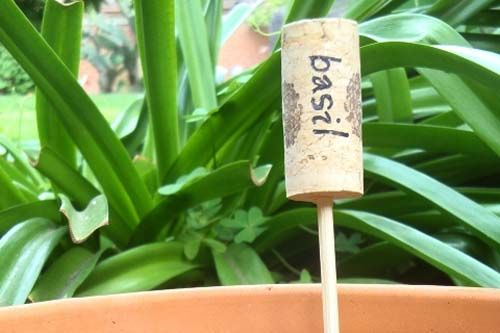 Used wine bottle corks to identify plants and herbs.