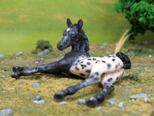 Gorgeous Custom Breyer Foal Tater Tot Cm Wbp Baby Dr Bill C