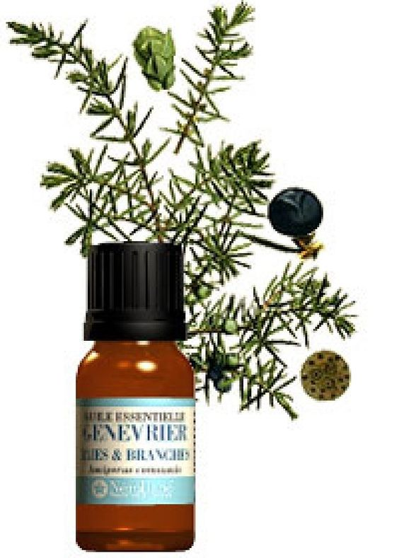 huiles essentielles contre la retention d 39 eau les huiles essentielles pinterest blog and d. Black Bedroom Furniture Sets. Home Design Ideas