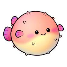 Fisk Blåsfisk pufferfish