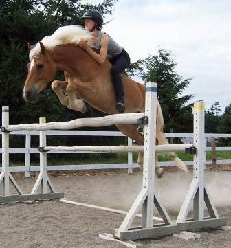 bareback and bridleless with superb equitation - bravo! If you cant ride this well in the saddle, don't be mean, don't go bareback!