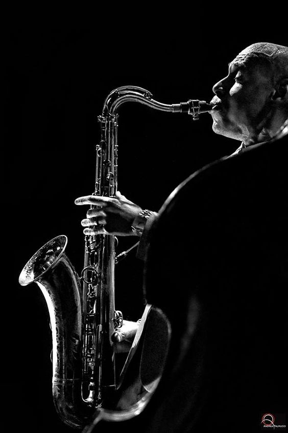 Jazz & Swing • Joshua Redman Andrea Palmucci Photographer © 2015:
