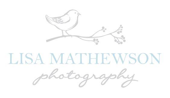 new logo I designed for Lisa Mathewson Photography