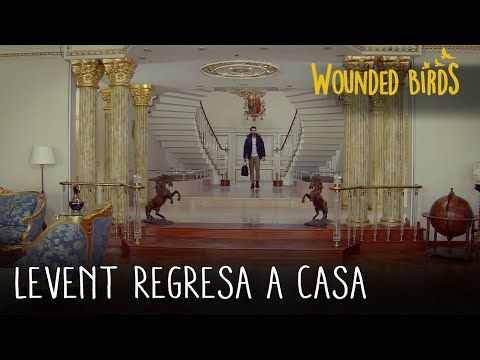 Levent Regresa A Casa Wounded Birds Yarali Kuslar Capitulo 2 Mother And Baby Mother Beauty