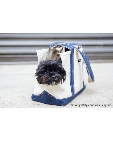 BOAT CANVAS CARRIER (HAMPTON BAG)  made of 24 oz. Canvas Duck with a leash attachment and a cinch buckle closure. Machine Washable or Dry Clean to avoid fade. M