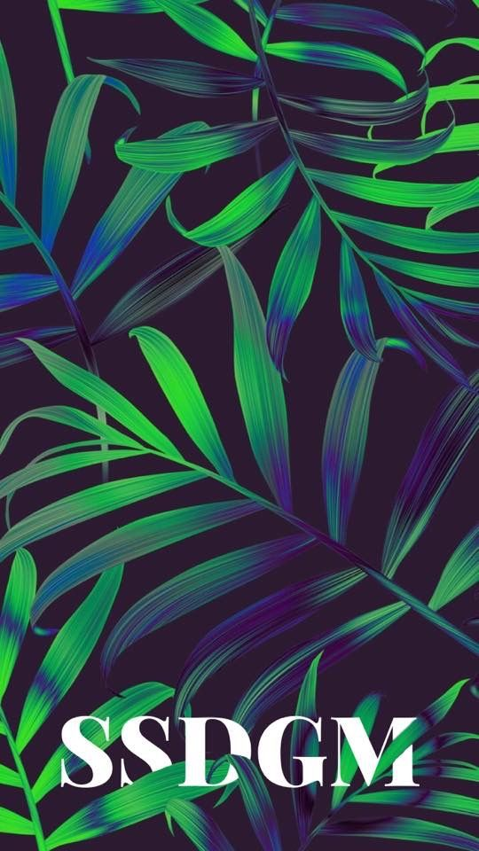 """Pin By À¸ª À¸§à¸£à¸£à¸""""า On À¹ƒà¸šà¹""""ม Tumblr Iphone Wallpaper Cute Tumblr Wallpaper Leaves Wallpaper Iphone"""
