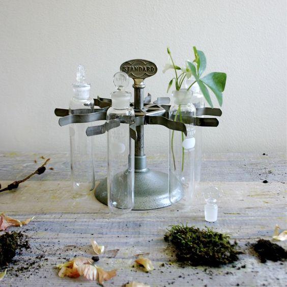 vintage lab test tubes as bud vases.