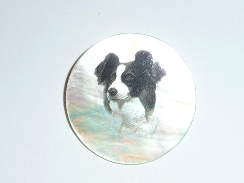 Adorable Border Collie Dog on Mother of Pearl Shank Button 1 3 8"