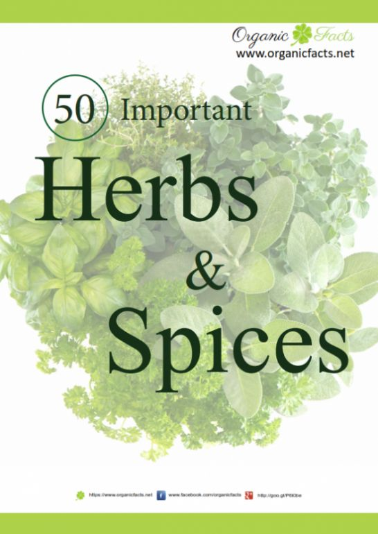 Ebook by organic facts on 50 important herbs and spices that are ebook by organic facts on 50 important herbs and spices that are used for culinary applications and have many medicinal benefits and uses pinterest fandeluxe Ebook collections