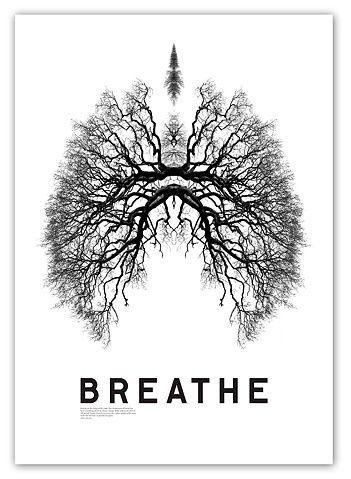 Respira... E deixe ir!