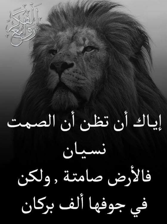 Pin By فلسطينية ولي الفخر On روائع الحكم Arabic Quotes Beautiful Arabic Words Meaningful Pictures
