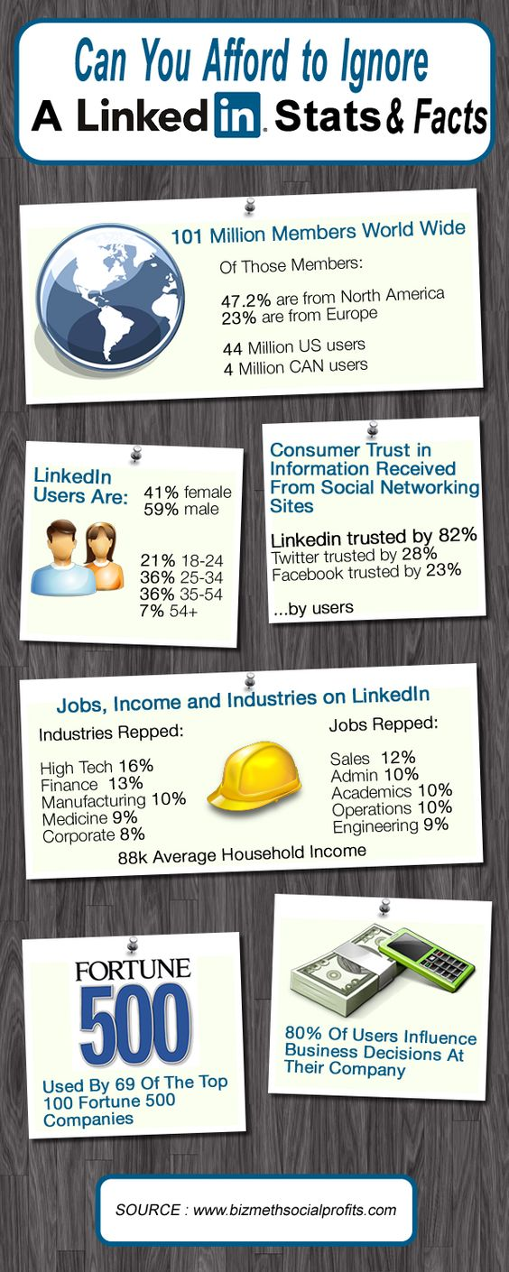 Can you afford to ignore Linkedin-Infographic - The stats www.tvshowhow.com