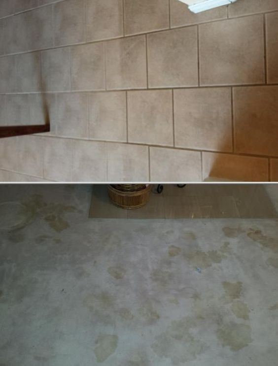 Pacific Carpet Care is one of the top restoration companies and has over 20 years of experience. They offer 24-hour water damage restoration services, cleanup, and more. Click to get a free quote for this Los Angeles based water damage cleanup professional.