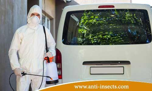 من خلال شركة مكافحة حشرات تتمكن من الحصول علي الكثير من الخدمات المتميزة التي تقضي تماما علي تواجد الحشرات بجميع انواعها المختلفة في كثير من انواع المبيدات المت