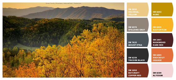 Great Smokey Mountains National Park, Tennessee - Sherwin Williams