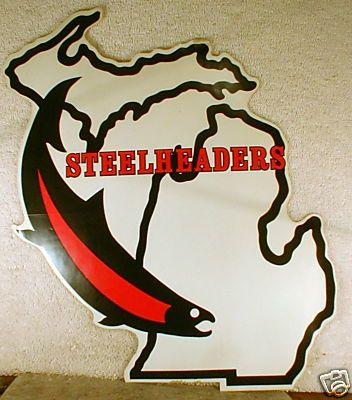 Michigan Steeheaders