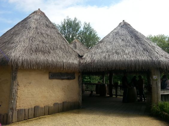 Bali and Java thatch | Arundo Reed Europe