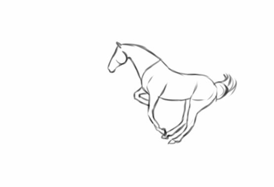 Line Drawing Animation : Pinterest the world s catalog of ideas