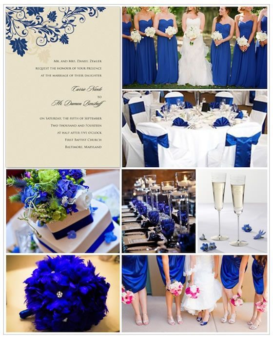 Deep cobalt blue wedding color theme, giving a stark jewel-toned contrast to white.