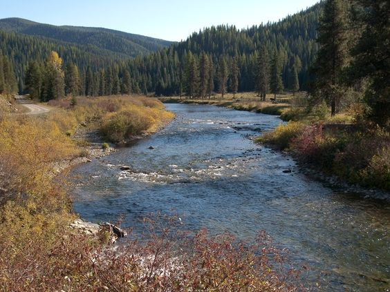 Photo of the St. Joe River at Red Ives, Idaho Panhandle National Forests: Joe River, Ives Stands, Red Ives, Forests Photo, Ives Idaho, Longest Rivers, National Forests