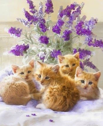 Kittens and lavender.: