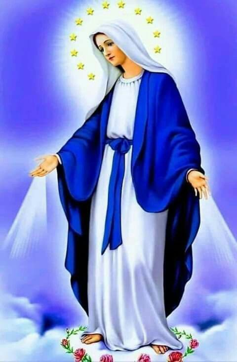 Pin De Marlene Zapata Osorio En Frases E Fotos Bonitas Arte Virgen María Imagenes De Santos Catolicos Virgen De Guadalupe Fotos