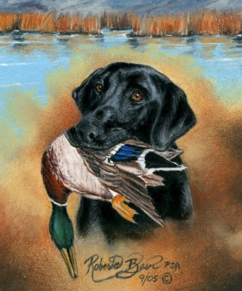 black lab hunting dogs | Pastel Black Labrador Retriever Duck Hunting Painting by Roby Baer