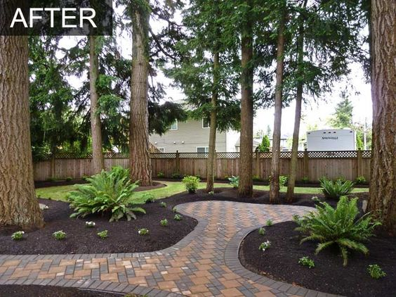 Landscaping Under A Pine Tree : Under pine trees garden home and backyards