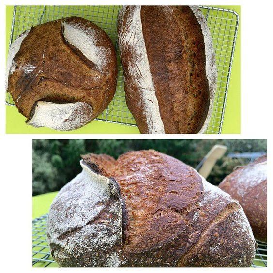 The explosion en Charente-Maritime :D toujours du #pain au #levain en adaptant le protocole aux chaleurs très estivales ! #picture #bread #fdb #sourdough #fermentation
