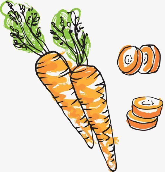Dibujo De Zanahoria Creative Vegetal Cartoon Zanahoria Verduras Dibujo Pintura De Fruta Zanahorias Dibujo Como se dibuja una zanahoria. dibujo de zanahoria creative vegetal