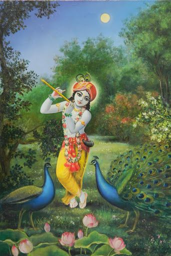 Top Lord Krishna Peacock images for free download