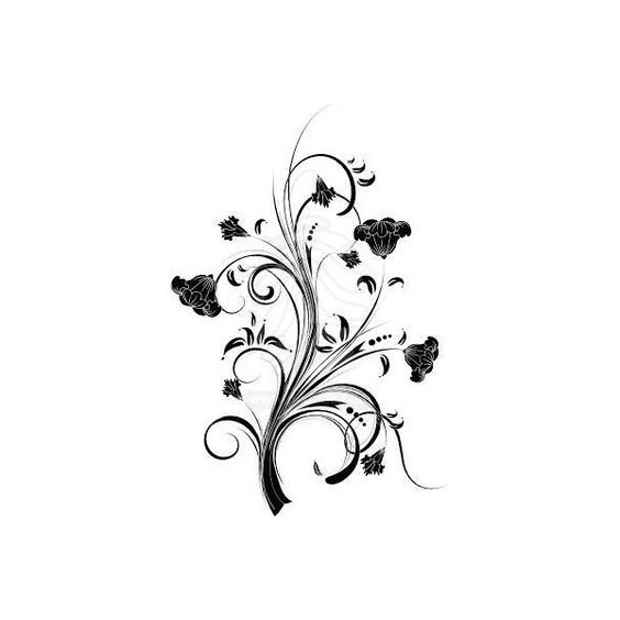 Floral background | stock photos #8479746 | Pixmac ($5.05) ❤ liked on Polyvore