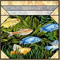 Fish Bowl Pattern