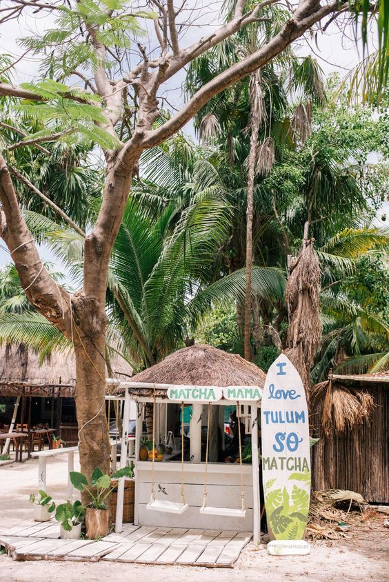 Our Full 5 Day Tulum Travel Guide Julia Berolzheimer Tulum Travel Tulum Travel Guide Tulum