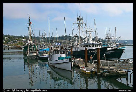 Commercial fishing boats newport oregon usa color for Commercial fishing boats for sale in oregon