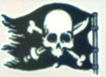 Piratenflaggen Tattoo #Pirate #PirateTattoo #PirateFlag #PirateSkull