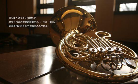 柔らかく深々とした音色で、金管と木管の中間に位置するハーモニー楽器。楽器ホルンのまとめ