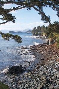 Kodiak Island. My very favorite place. Just set up camp on any beach, build a fire with driftwood on beach, hope the bears stay away